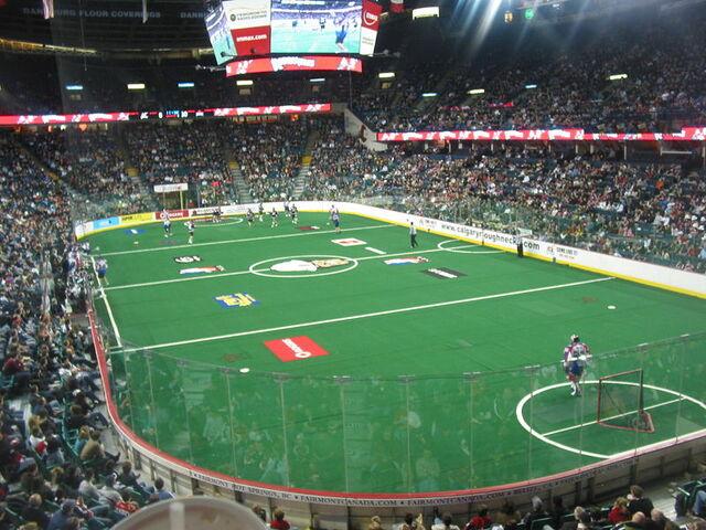 File:Pengrowth Saddledome lacrosse.jpg