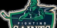 St. Clair Shores Fighting Saints