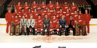 1980–81 Detroit Red Wings season
