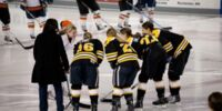 2010–11 Boston Blades season