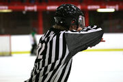Youth Hockey Official