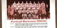 1966-67 WHL (minor pro) Season