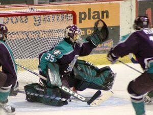 Hockey goal cmd 2004