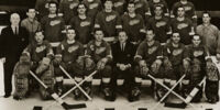1966–67 Detroit Red Wings season