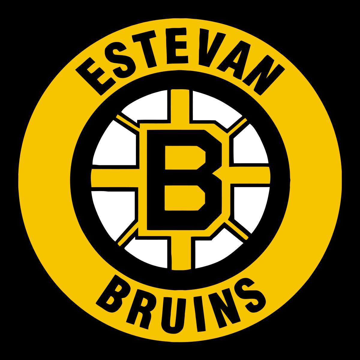 File:Estevan Bruins.png