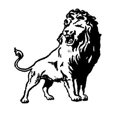 File:Washington lions 1943.png