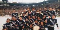 1977-78 1.Bundesliga season