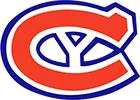 Connecticut Yankees logo