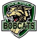 NYBobcats logo