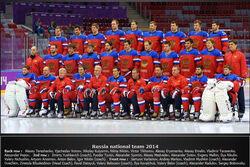 2014Russia