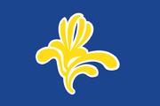 Brussels Flag