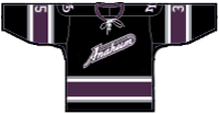 File:MightyDucksThirdJersey3.png