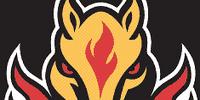 1998–99 Calgary Flames season