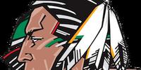 2010–11 North Dakota Fighting Sioux women's ice hockey season