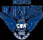 Gnesta IK logo