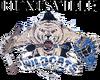 Huntsville Wildcats