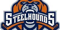Youngstown Steelhounds