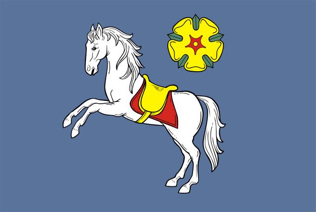 File:Ostrava Flag.png