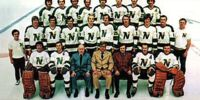 1972–73 Minnesota North Stars season