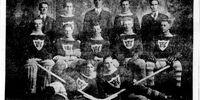 1917-18 MJHL Season