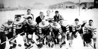 1928–29 Detroit Cougars season