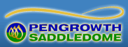 File:Pengrowth Saddledome logo.png