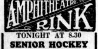 1934-35 Manitoba Senior Hockey League Season