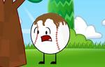 BaseballWhat'sThis