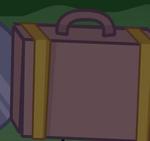 SuitcaseError