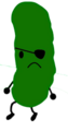 Pickle 4
