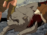 Royo (old wolf in ep 102)