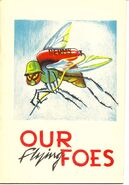 Our Flying Foes