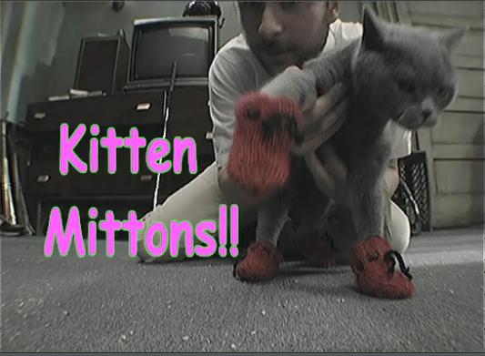 File:Kitten-mittons2.jpg
