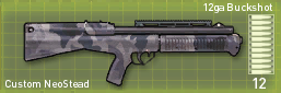 File:CustomNeostead.png