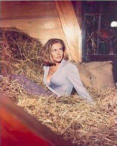 File:Pussy in Hay.jpg