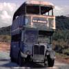 Vehicle - Bus
