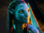 Beautiful neytiri in avatar-normal