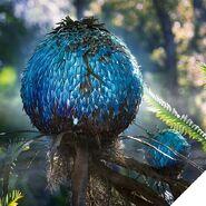 Pandoraworldofavatarpuffball