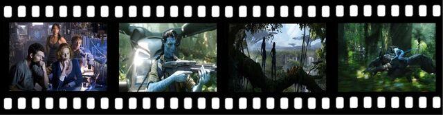 File:Avatar23.jpg