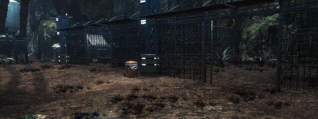 File:Prisoncells.jpg