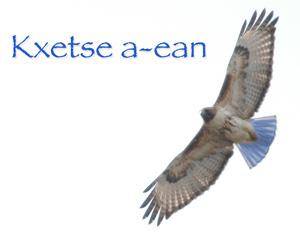 File:Kxetse-a-ean.jpg