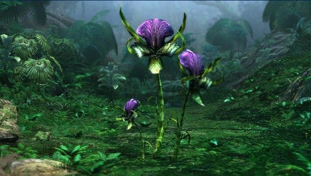 File:Mantis Orchid.jpg
