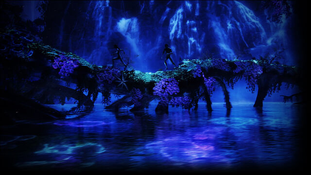 File:Bioluminescence.jpg