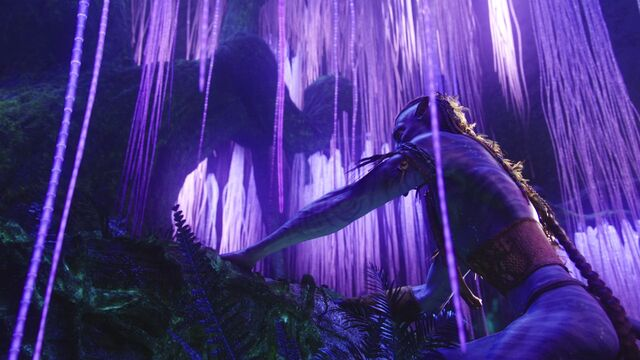 File:Avatar br 2290 20100627 1938371886.jpg