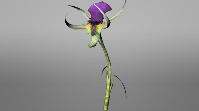File:Pandora ROVR Mantis Orchid.png