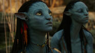Neytiri looking at Toruk makto