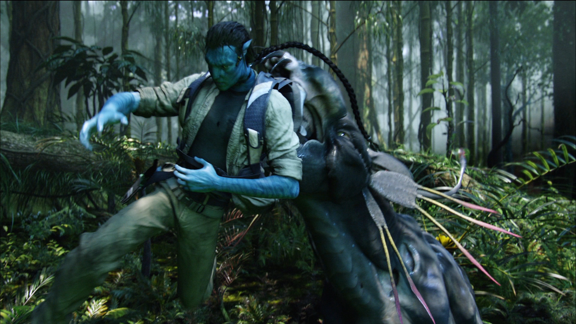 How does the movie avatar...?