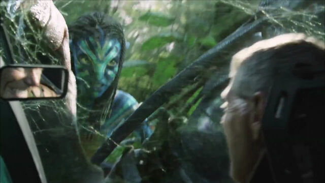 File:Neytiri fights quaritch.jpg
