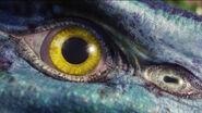 Banshee Eyes
