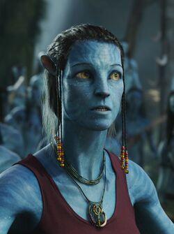 Grace Avatar Infobox